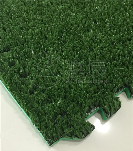 1702 Leisure Grass