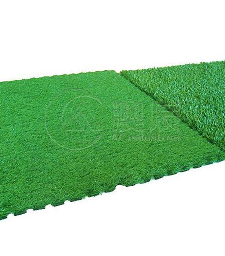 1701 Sports Grass