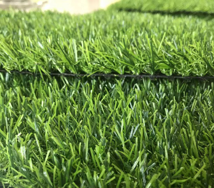 1702-1 Landscaping Grass Economical Type