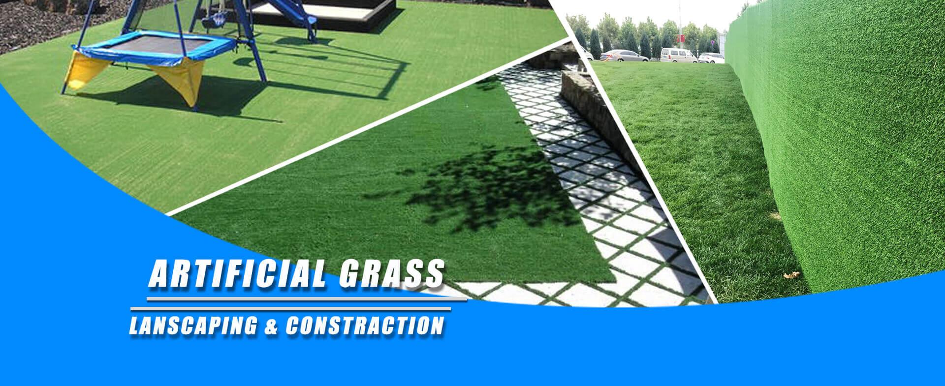 grass11