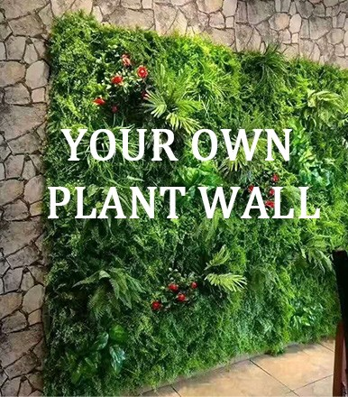 YOUR OWN PLANT WALL