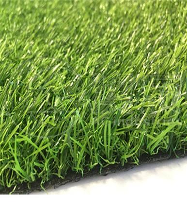 ACG170202 Landscaping Grass Normal