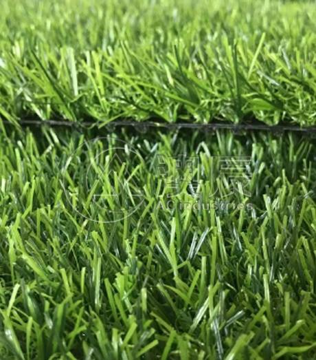 ACG170201 Landscaping Grass