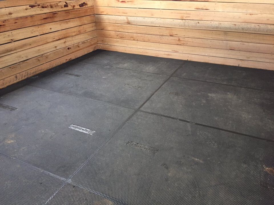 New Horse mat.jpg