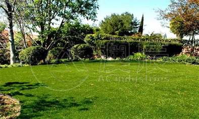 1702-2 Landscaping Grass Normal